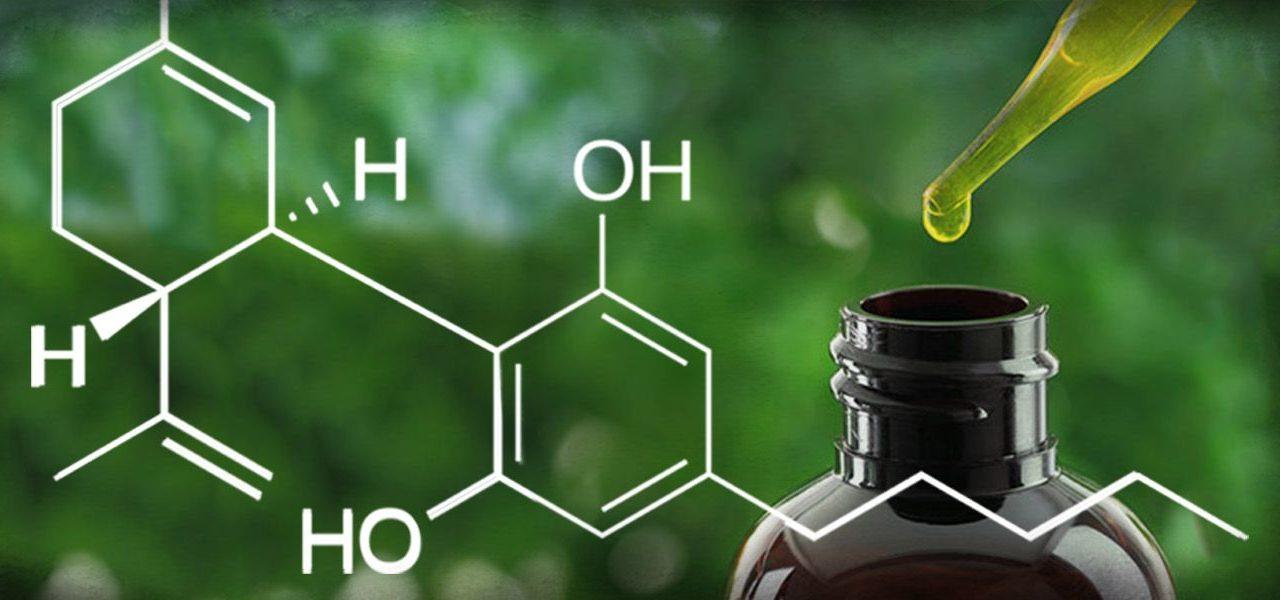 Wat is CBD olie?